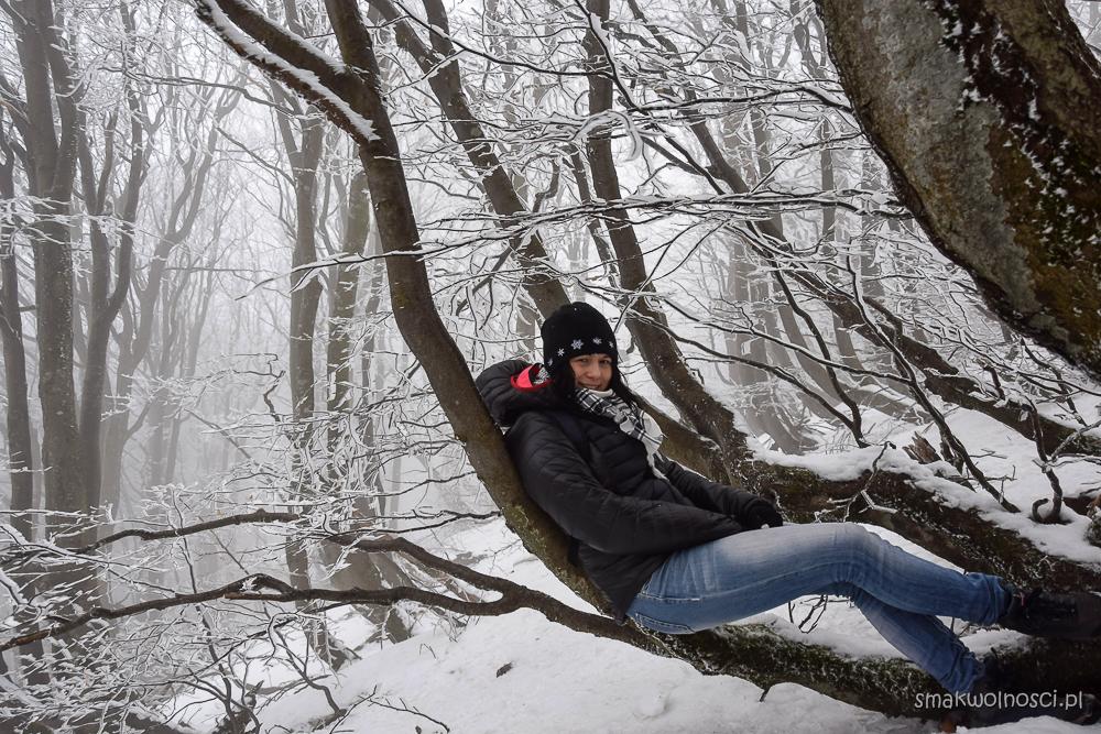 Zimowa Połonina Wetlińska