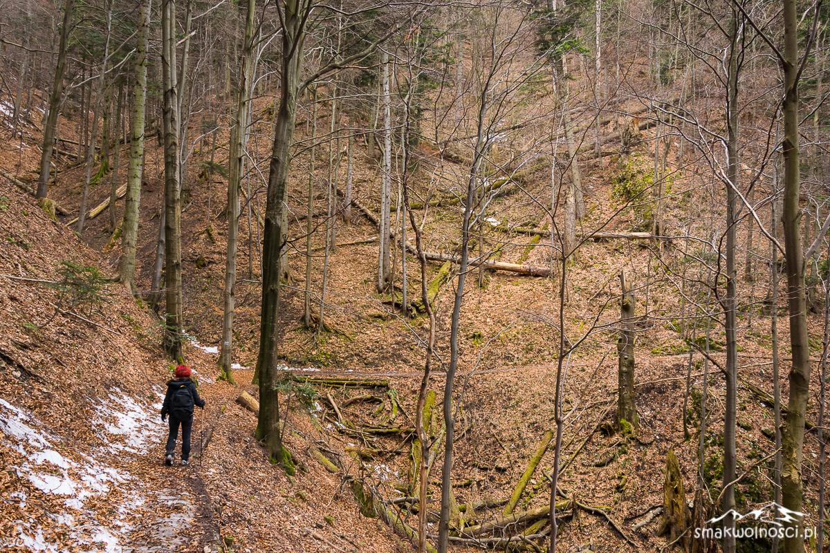 szlak niebieski w Pieninach