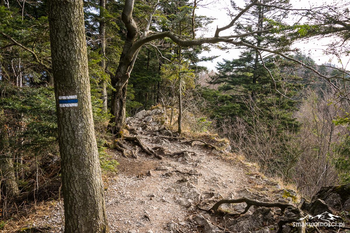 szlak na Sokolicę