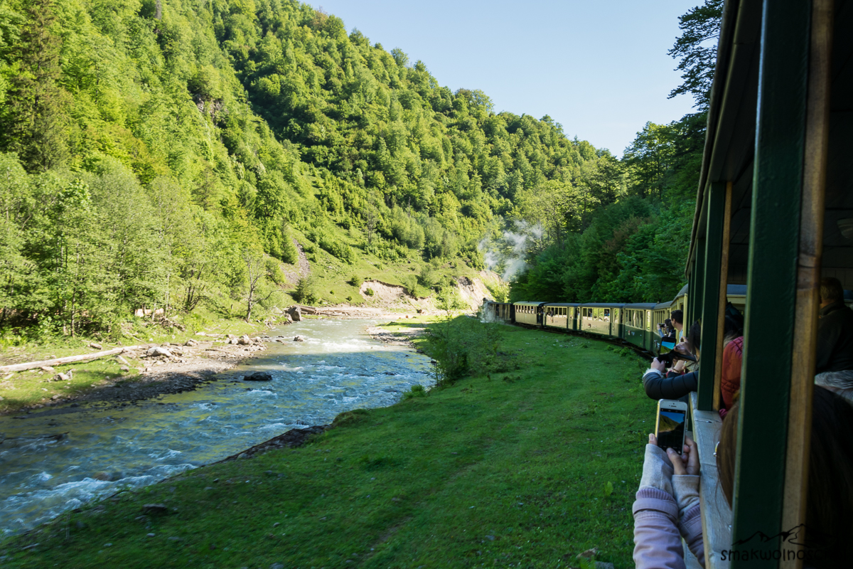 kolejka leśna w Viseu de Sus