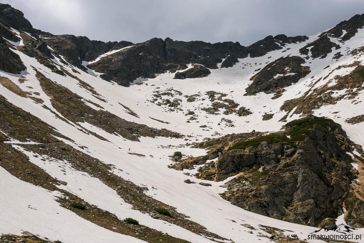 góry rodniańskie, pitrosul