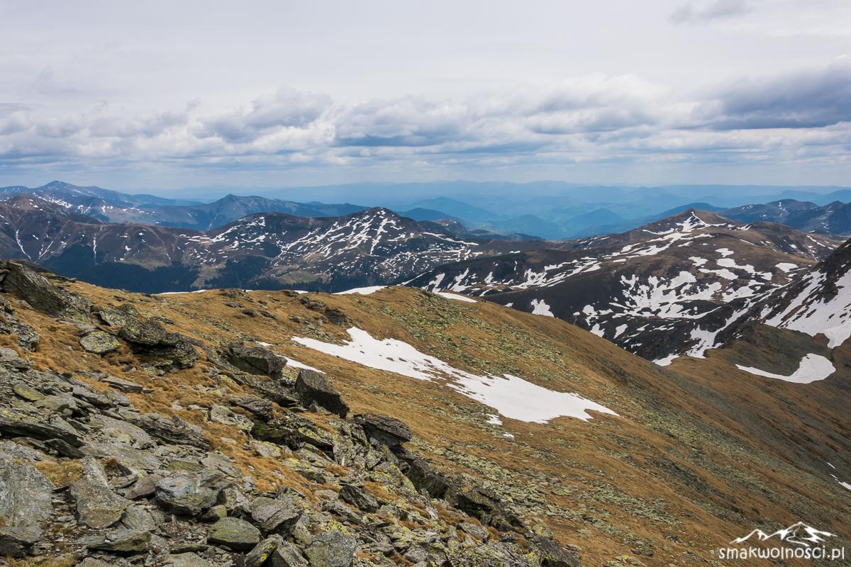 góry rodniańskie, pietrosul
