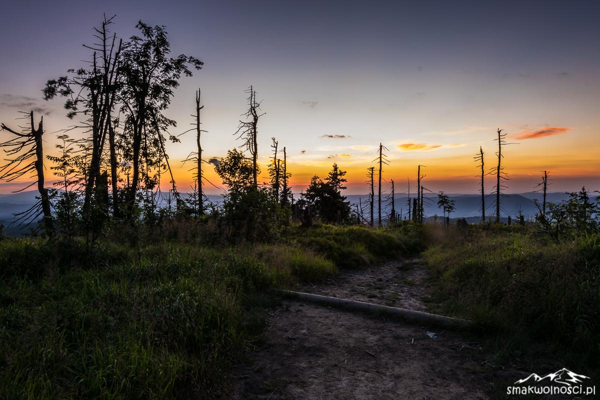zachód słońca na Turbaczu