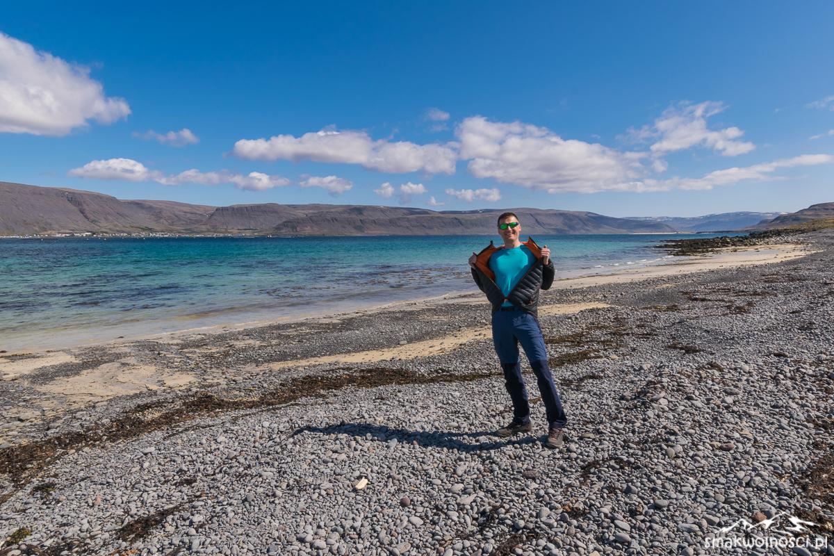 wybrzeze islandii